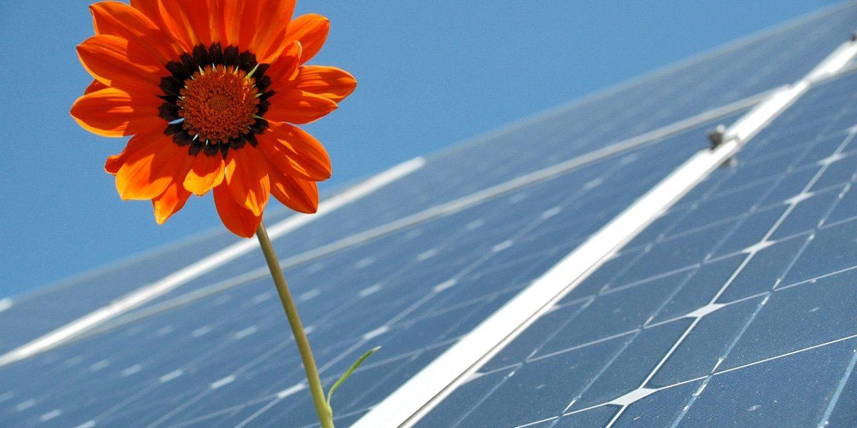 Na capital paranaense temos irradiação solar superior à de alguns dos maiores produtores mundiais de energia solar em Curitiba.